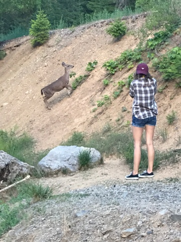 I've never been so close to a deer!